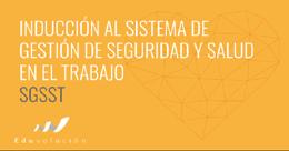 Inducción al Sistema de Gestión de Seguridad y Salud en el trabajo - Clon de 2031