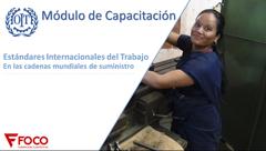 Estándares Internacionales del Trabajo, en las cadenas mundiales de suministro.